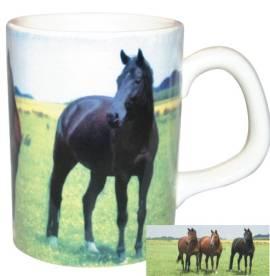 Zwei kleine Tassen dunkle Pferdeherde