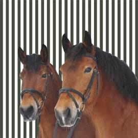 Servietten zwei Pferdefreunde