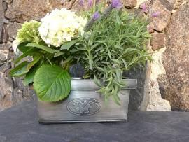 Blumenkasten / Pflanzkübel galoppierendes Pferd rechteckig