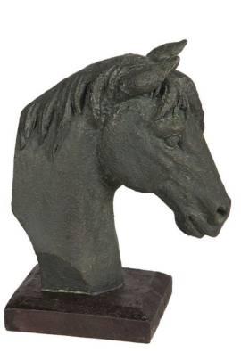 Statur Pferdekopf